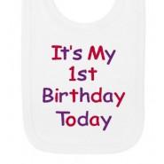 It's My 1st Birthday Today Girl Baby Bib