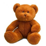 Michael Bear Dark Brown 26cm