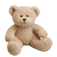 Michael Bear Cream 26cm