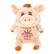 Pudding Pop The Pig