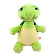 Mr Shigglesworth The Turtle