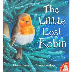 The Little Lost Robin Christmas Children's Storybook