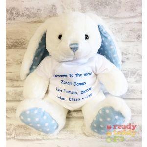 Blue Spotty Baby Bunny Rabbit