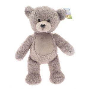 Ted The Teddy Bear
