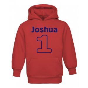 Applique Number (CHOOSE FABRIC) + Any Name Childrens Embroidered Hoodie