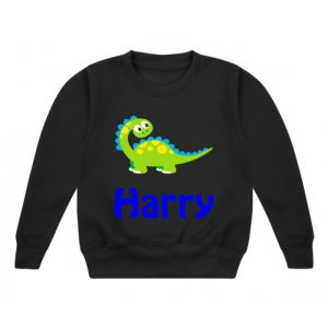Cute Dinosaur Any Name Childrens Sweatshirt / Jumper
