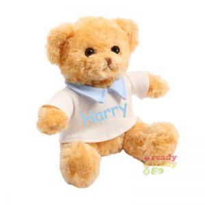 Teddy Bear wearing Cream T-Shirt with Blue Collar